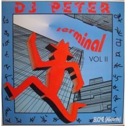 DJ Peter  – Terminal Vol II - American Party Destroy