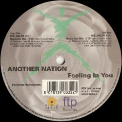 Another Nation ‎– Feeling In You