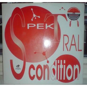 Spektral Condition – Cat Four (CONTRASEÑA RECORDS)