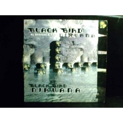 Black Bird  By Ghönsso & Tazz  – Nirvana