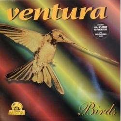 Ventura – Birds (BOY RECORDS)