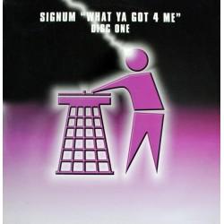 Signum - What Ya Got 4 Me?