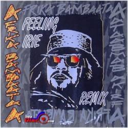 Afrika Bambaataa – Feeling Irie (Remix)
