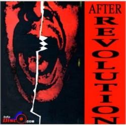 After Revolution – After Revolution