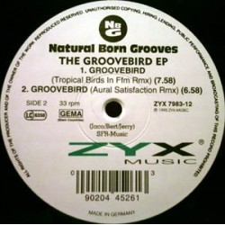 Natural Born Grooves - The Groovebird EP (ZYX MUSIC)