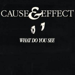Cause & Effect ‎– What Do You See