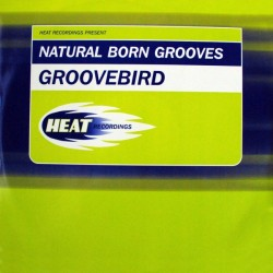Natural Born Grooves ‎– Groovebird