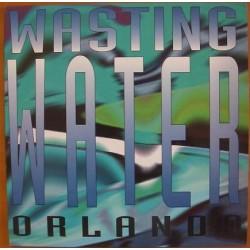 Orlando  - Wasting Water (COPIA NACIONAL,TEMAZO ITALO¡¡¡)