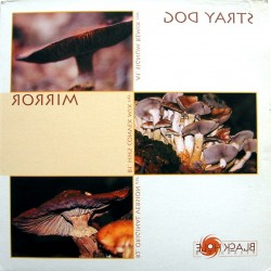 Stray Dog ‎– Mirror (TEMAZO SIGNUM¡¡)