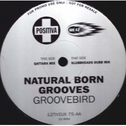 Natural Born Grooves - Groovebird (Klubbheads remix)