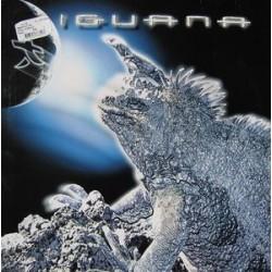 Mauro Picotto – Iguana