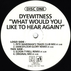 Dyewitness ‎– What Would You Like To Hear Again