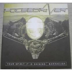 Pulsedriver – Your Spirit Is Shining (ANTHEM)