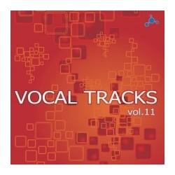 Vocal Tracks EP Vol.11