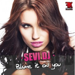 Dj Sevi-Blame it on you