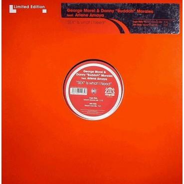 George Morel & Danny Buddah Morales Feat. Arlene Amaya – Sex Is What I Need