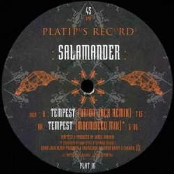 Salamander – Tempest