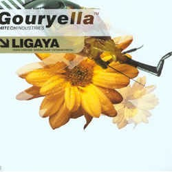 Gouryella ‎– Ligaya (Part 2 Of A 2 Vinyl Set)