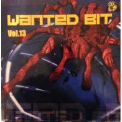 Wanted Bit Vol. 13