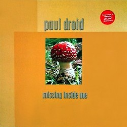 Paul Droid - Missing Inside Me
