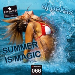 Dj Pekas - The Summer Is Magic(PASSWORD RECORDS)
