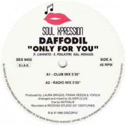 Daffodil - Only For You (BIT MUSIC)