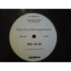 Open Arms Featuring Rowetta ‎– Hey Mr DJ