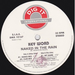 Key Word ‎– Naked In The Rain