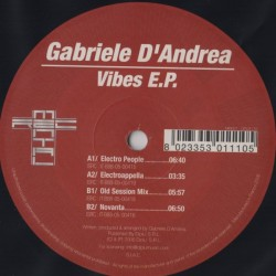 Gabriele D'Andrea – Vibes EP