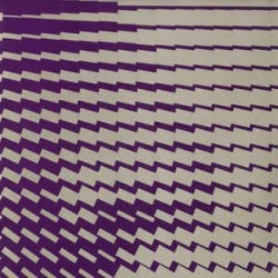 Pascal FEOS – Synaptic 04