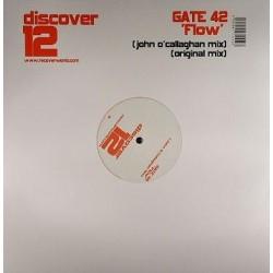 Gate 42 – Flow