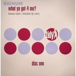 Signum – What Ya Got 4 Me (Disc One)
