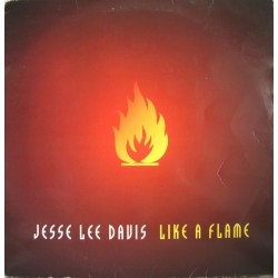 Jesse Lee Davis - Like A Flame
