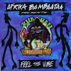 Afrika Bambaataa  - Feel The Vibe(2 MANO,REMEMBER 90'S)