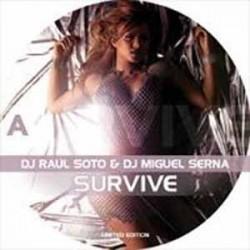 Miguel Serna & Raul Soto - Survive