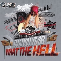 Dj Angu - What the hell(CUBE RECORDS)