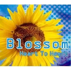 Blossom – Heart To Heart (2 MANO,TEMAZO MAKINA BUSCADISIMO¡¡)