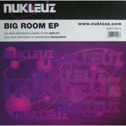 Nick Sentience / Mark Tyler / Thermobee – Big Room EP (COMO NUEVO,BASUCO HARDHOUSE¡)