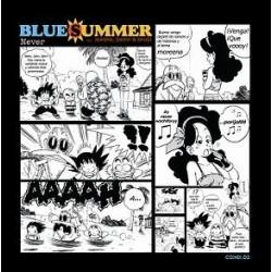 Blue Summer aka JDS – Never (2 MANO,COMO NUEVO¡)