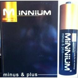 Minnium - Minus & Plus (TEMAZOOOOOOOOOO¡¡¡¡)