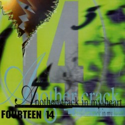 Fourteen 14 – Another Crack In My Heart