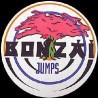 Bonzai Jumps